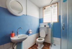 トイレ掃除 おすすめのトイレ用洗剤